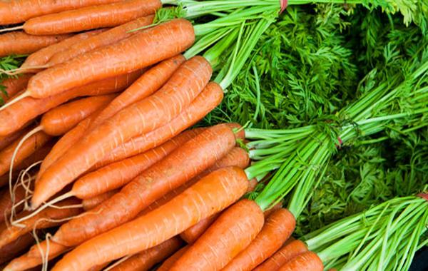 zanahorias-frescas