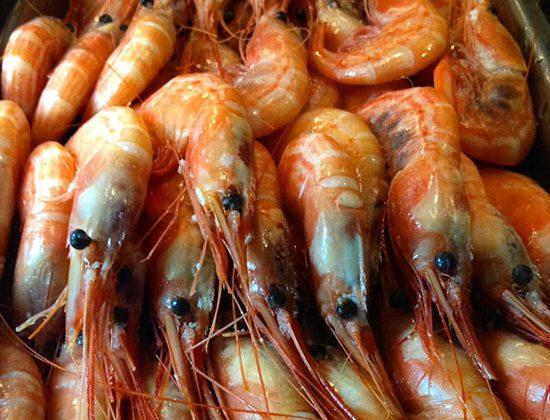 marisco-fresco-para-comer-en-Restaurante-Valencia